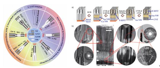 """这些""""多段异质纳米线与纳米管组成的分支结构"""""""